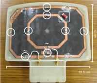 Bobina a radio-frequenza per risonanza magnetica risonante alle frequenze di Larmor del fosforo e dell'idrogeno a 1.5T.